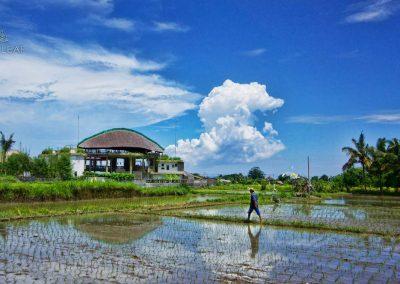 Best-retreat-TripAdvisor-farmer