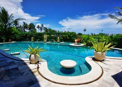 Healing-Pool-Bali-beauty